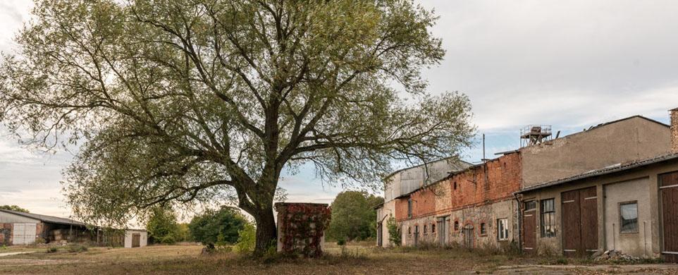 CULTURE SEEDING – Film-, Theater- und Musik-Workshops im ländlichen Raum